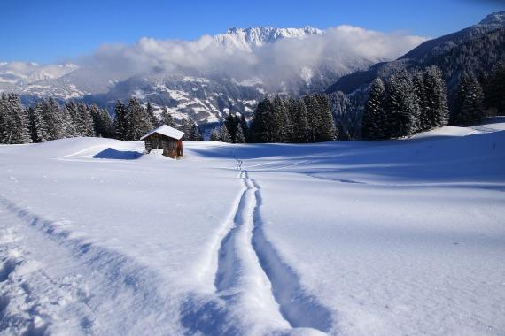 winter-2024112_1920